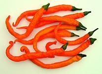 Paprika – chilli Turuncu Spiral