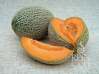 Meloun cukrový Best Jumbo